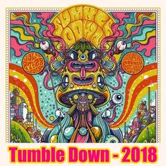 Twiddle – Tumble Down 2018 Live (2018) Mp3