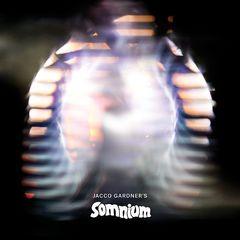 Jacco Gardner – Somnium (2018) Mp3