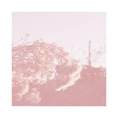 Hailen Jackson – Rebuild (2019) Mp3