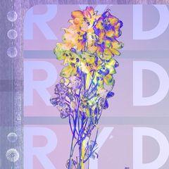 Ryd – Ryd (2019) Mp3