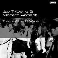 Jay Tripwire & Modern Ancient – This Is What U Want (2019) Mp3