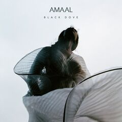 Amaal – Black Dove (2019) Mp3