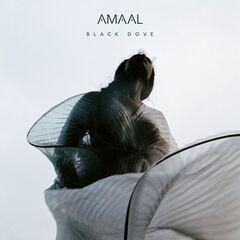 Amaal – Black Dove (2019) Mp3