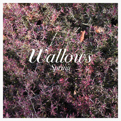 Wallows – Spring (2018) Mp3
