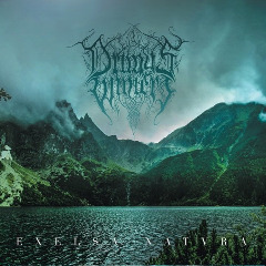 Drimys Wintery – Excelsa Natvra (2019) Mp3