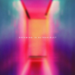 Joyless Euphoria – Dreaming In Ultraviolet (2019) Mp3