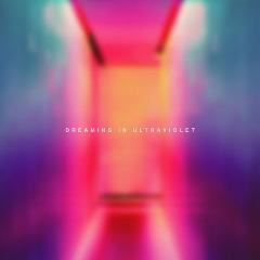 Joyless Euphoria – Dreaming In Ultraviolet (2019) Mp3
