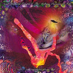 Acid Mothers Temple & The Melting Paraiso U.f.o. – Sacred And Inviolable Phase Shift (2018) Mp3