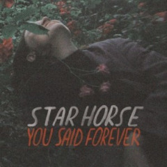 Star Horse – You Said Forever (2019) Mp3