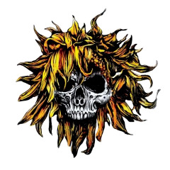 Sunflower Dead – C O M A (2018) Mp3
