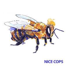 Nice Cops – Nice Cops (2019) Mp3