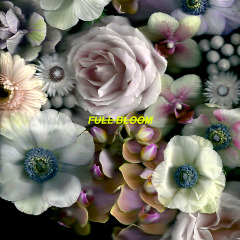 Alpines – Full Bloom (2018) Mp3