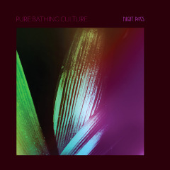 Pure Bathing Culture – Night Pass (2019) Mp3
