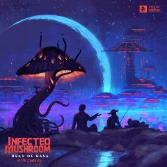 Infected Mushroom – Head Of Nasa & The 2 Amish Boys (2018) Mp3