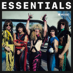 Twisted Sister – Essentials (2019) Mp3