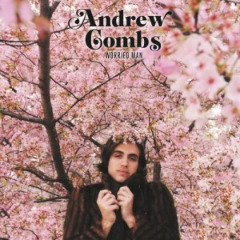 Andrew Combs – Worried Man (2019) Mp3