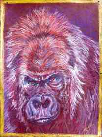 gorilla/Prisma