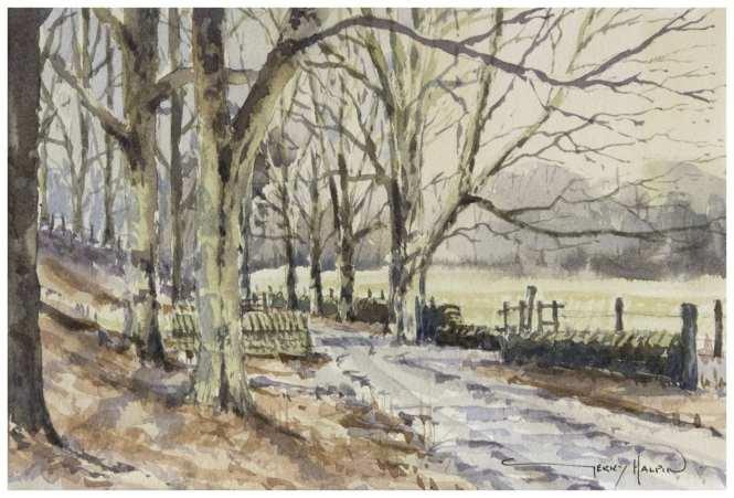 'Towards Deane Woo, Rivington' by Gerry Halpin