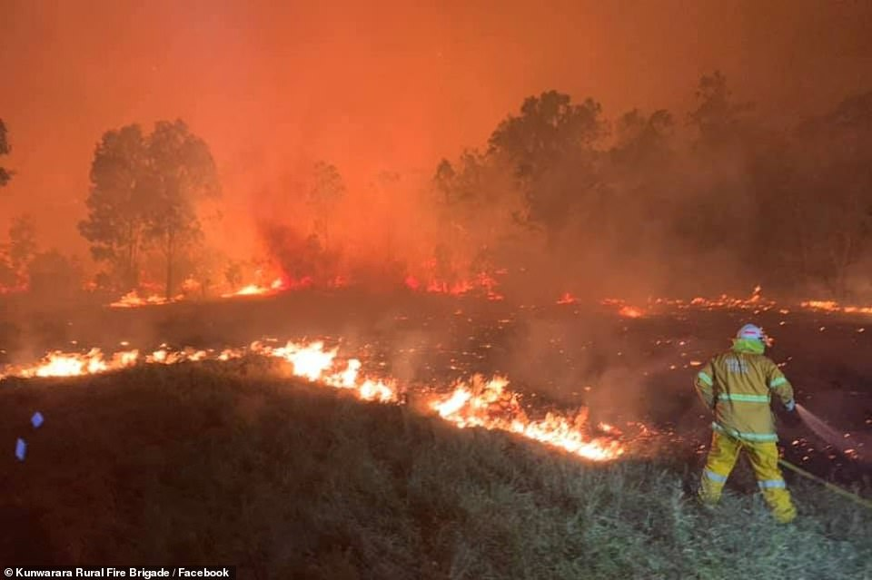20839734-7671181-Firefighters_from_Tasmania_are_being_mobilised_to_relieve_exhaus-a-63_1573438583790