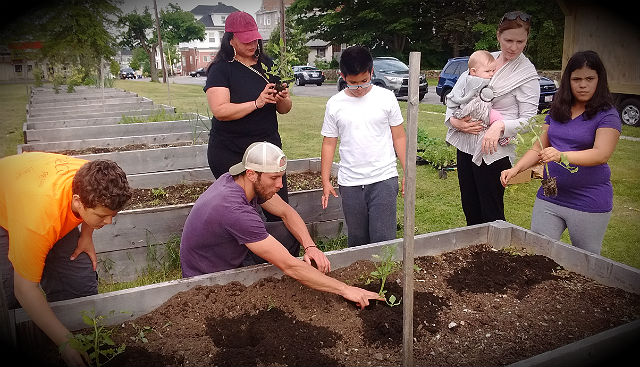 Planting Roots in New Bedford