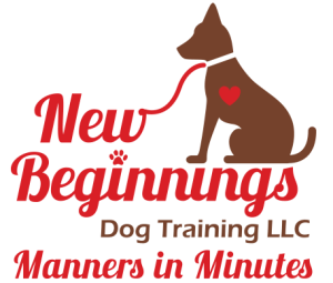Dog Training Programs and Services
