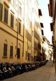 Rows of mopeds (Florence, Italy)
