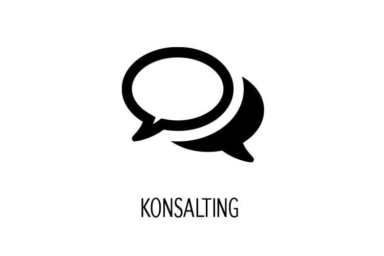 konsalting online nastup