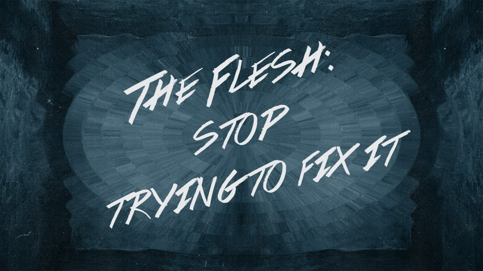 The Flesh - Stop Trying to Fix It