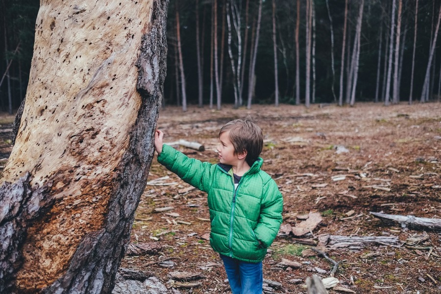 Boy in green coat standing next to a tree and touching it