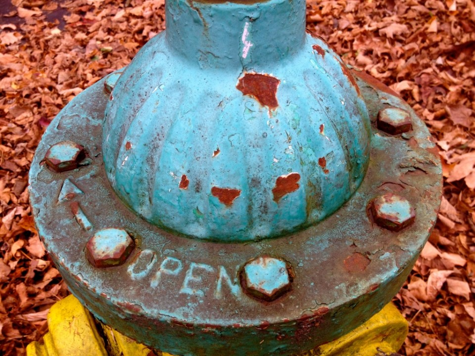 Fire_Hydrant_In_City_of_Newburgh