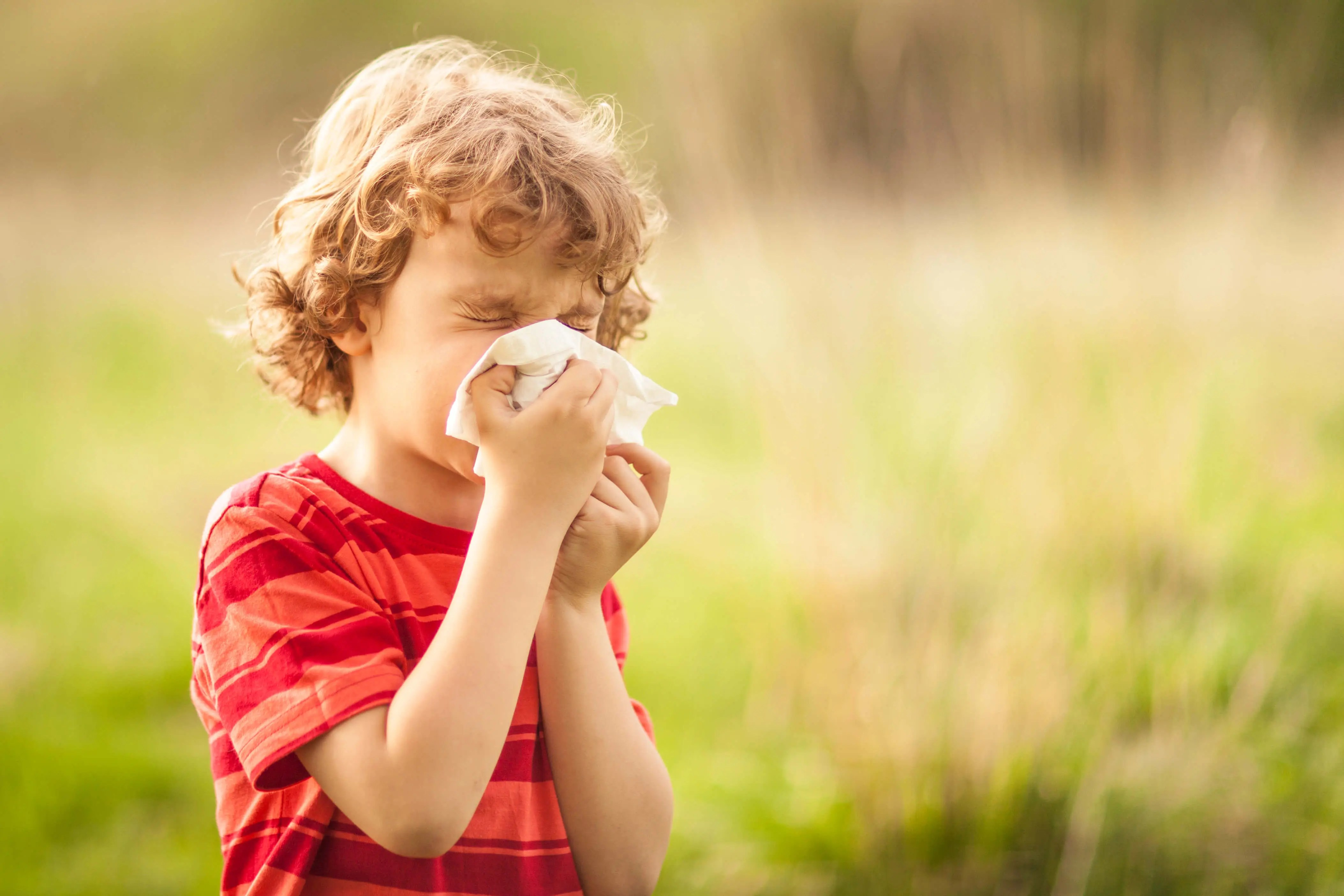 Boy sneezing in an open field due to allergies