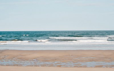 Beach Bums: Enjoying sand and surf on the North Shore, Plum Island