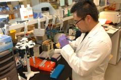 Medical_Laboratory_Scientist_US_NIH