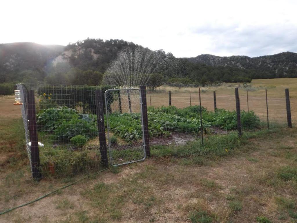 Total Garden Success