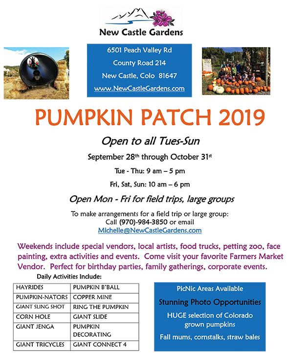 2019 Pumpkin Patch