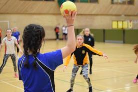 8 School Games Handball 09.03.2017 058