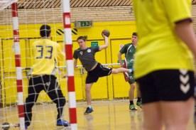 Handball_07--02-2014-62