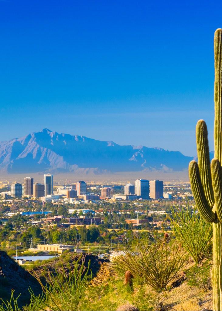 Newcastle Properties Invests in Phoenix