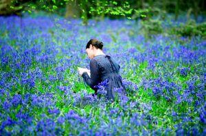 film feat art 9_24_09 bright_star07