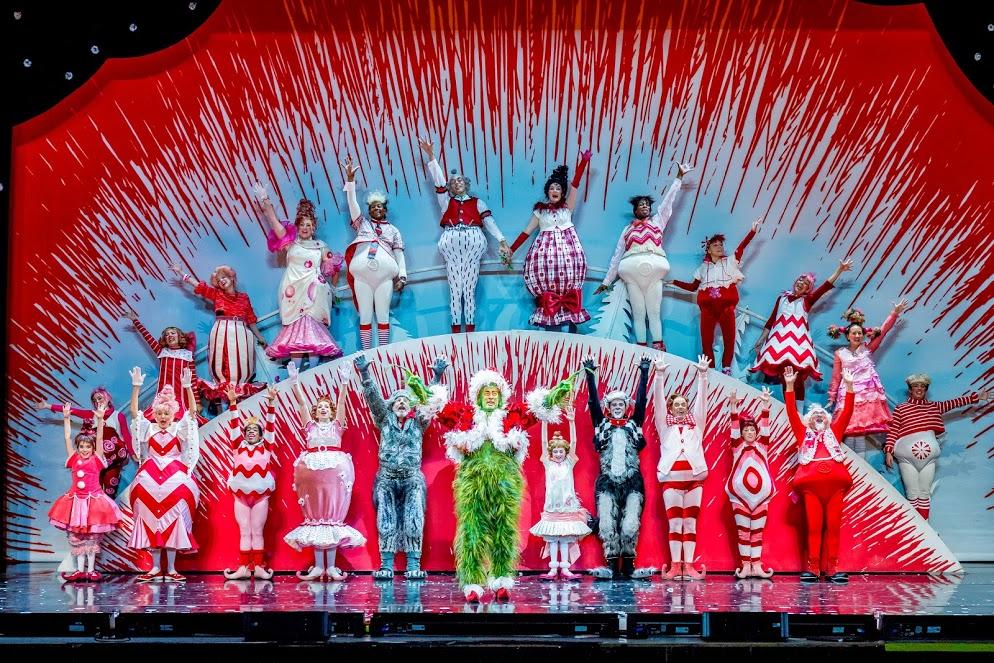 Mr Christmas Light Show
