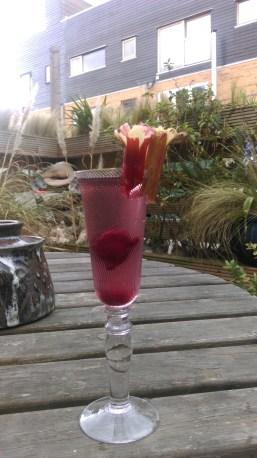 rhubarb_cocktail