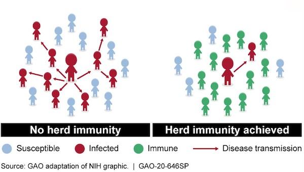 群體免疫是透過大部分人接種疫苗降低傳染機會。 圖片來源:Avian Flu Diary