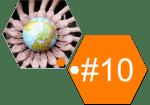 #10 valeurs 12