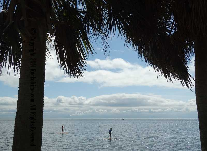 Florida paddleboarders get all the news related to medical marijuana in florida and legal cbd