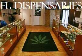 Florida dispensary finder Locate a dispensary near you in Florida for medical cannabis, cannabidiol, charolettes web using fl dispensaries