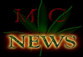 Marijuana Cannabis News Bud Digest