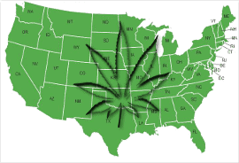 Nationwide Dispensary Finder By State