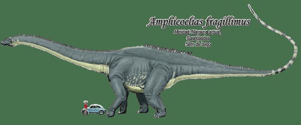 amphicoelias fragillimus dinosaurs weight jimdo facts animal bones