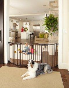 dog proof gate