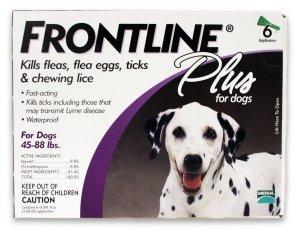 flea medicine